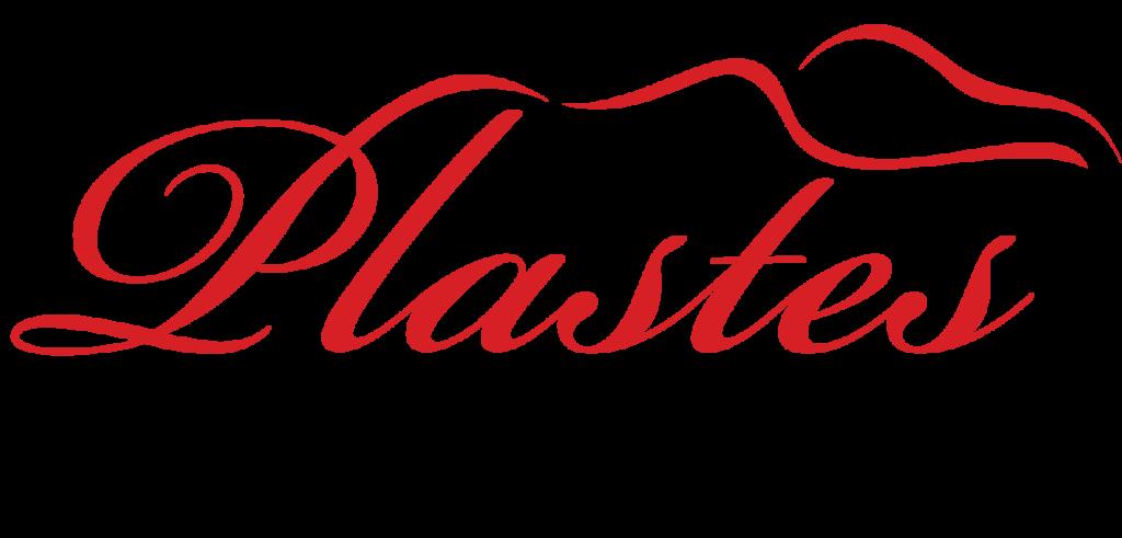 plaster logo